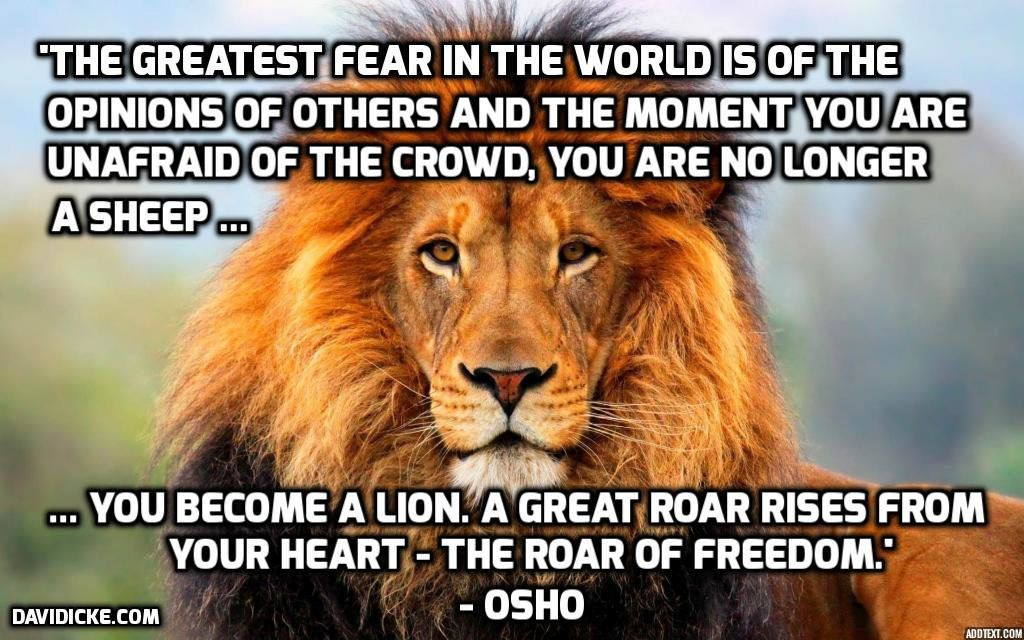 fear lion