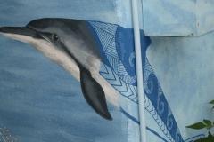 delfin_cook
