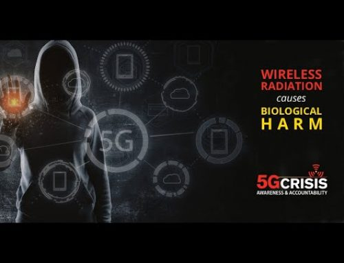 5G SUMMIT ONLINE 26. AUG – 1. SEPT – LISTEN TO THE EXPERTS